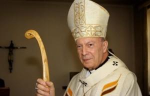 Dois grandes prelados apoiam Medjugorje em Viena