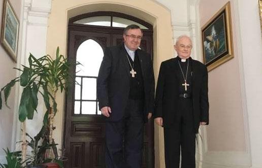 cardealebispomedjugorje